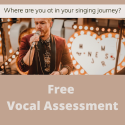 Image of Free Vocal Assessment Tool